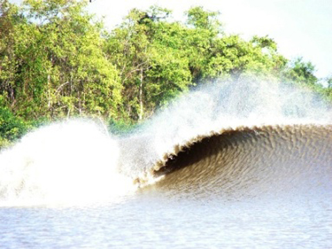 pororoca wave Surfing the Worlds Longest Wave   The Pororoca, Amazon, Brazil
