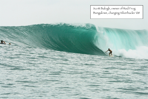 bocas wave Destination: Bocas Del Toro, Panama