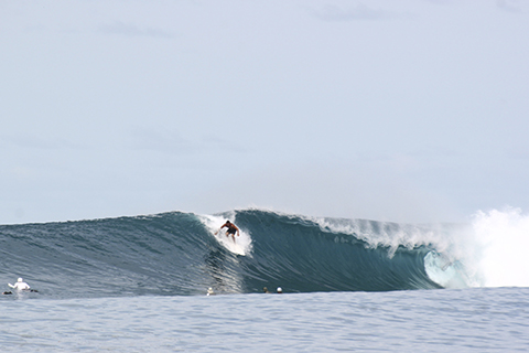 sumatra 09 Adventure Story: Points North   Surf Exploration In Northern Sumatra