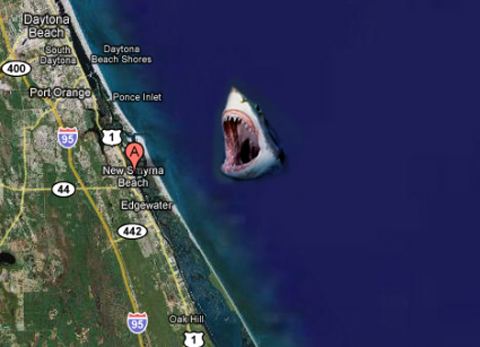 shark new smyrna copy New Smyrna Beach Asserts Itself as Shark Attack Capital of World