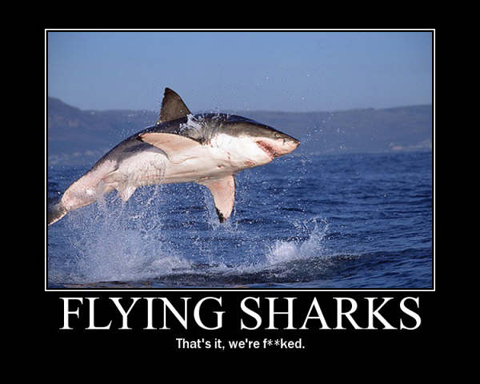 flying shark cartoon Recession Likely to Result in Fewer Shark Attacks?
